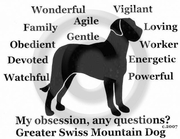 Greater Swiss Mountain Dog Obsession Sweatshirt