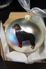 Rottweiler Hand Painted Christmas Ornament