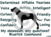 Bluetick Coonhound Obsession Tshirt