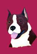 American Staffordshire Original Artwork Greeting cards - Set of Five