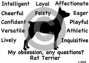 Rat Terrier Obsession T-Shirt