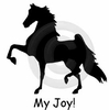 American Saddlebred Horse My Joy! My Love! My Life! Long Sleeve T-Shirt