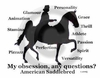 American Saddlebred Horse  Obsession Sweatshirt