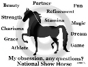 National Show Horse Obsession Long Sleeve T-Shirt