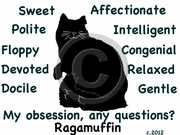Ragamuffin Obsession T-Shirt