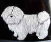 Coton de Tulear Hand Painted Purse