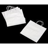 3249 - JR Mart White Shopping Bag with Handle 13 x 7 x 13 - 100ct