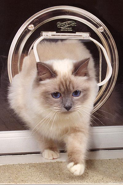 Catwalk cat door for through glass or thin panel catwalk cat door for through glass or thin panels planetlyrics Gallery