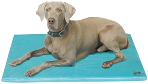 "Cool Dog Bed - Canine Cooler® Medium (24""X36"")"