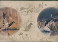 Duck Hunting Wallpaper Border DU2312b