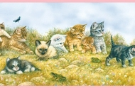 Playful Kittens Butterflies Frogs Wallpaper Border