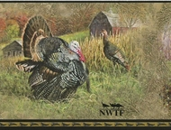 NWTF Wild Turkey Wallpaper Border JL1111bd