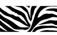 Self Stick Black Zebra Wallpaper Border