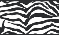 Girly Glam Black Zebra Wallpaper Border