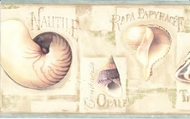 Seashells Wallpaper Border LA036122b