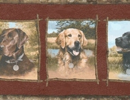 Labrador Dogs Wallpaper Border GQ159b