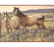 Wild Horses in Field Wallpaper Border SB10307b