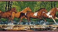 Spring Creek Horses Wallpaper Border SB10273B