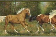 Horses Run Free Wallpaper Border TC48162b