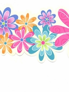 Funky Flowers Wallpaper Border