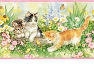 Curious Kittens Wallpaper Border GU92082b