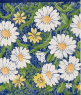 Colorful Daisies Wallpaper Border  CC823b