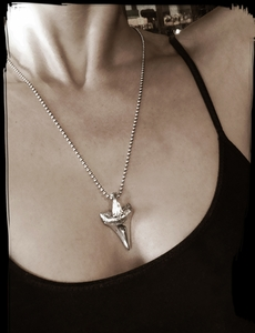 Shark Tooth Pendant Silver