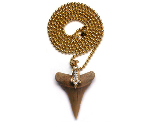 Natural Shark Tooth Pendant Gold Bail with Diamonds