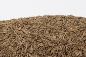 Caraway Seeds (1 Pound Bag)