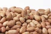 Raw Redskin Virginia Peanuts (25 Pound Case)