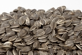 Unsalted In-Shell Sunflower Seeds (12 oz Bag)