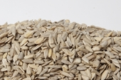 No Shell Raw Sunflower Seeds (16 oz Bag)