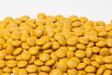 Gold Milk Chocolate M&M's Candy (25 Pound Case)