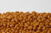 Jelly Belly Peanut Butter jelly beans (1 Pound Bag)