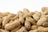 Raw In-Shell Peanuts (4 Pound Bag)