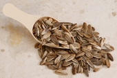 Unsalted In-Shell Sunflower Seeds (25 Pound Case)