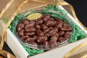 Sugar-Free Chocolate Pecan Gourmet Tray