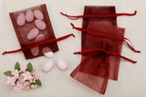 Burgundy Sheer Organza Party favor Bags
