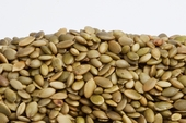 Unsalted Pepita - No Shell Pumpkin Seeds (1 Pound Bag)