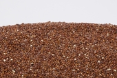 Organic Red Quinoa (25 Pound Case)