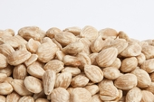 Unsalted Marcona Almonds (1 Pound Bag)