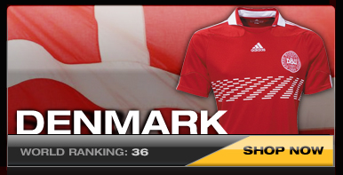 Denmark National Soccer Team