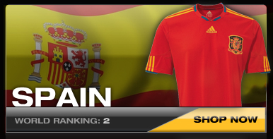 Spain National Soccer Team