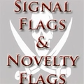 Signal & Novelty Flags