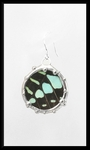 Graphium Butterfly Drop Earrings