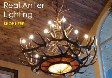 Antler Chandeliers and Decor