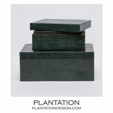 Serpentine Boxes Set | Green