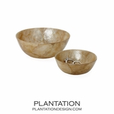 Dorian Shell Bowls Set | Golden