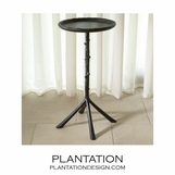 Vine Iron Side Table