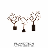 Fig Tree Iron Sculptures Set